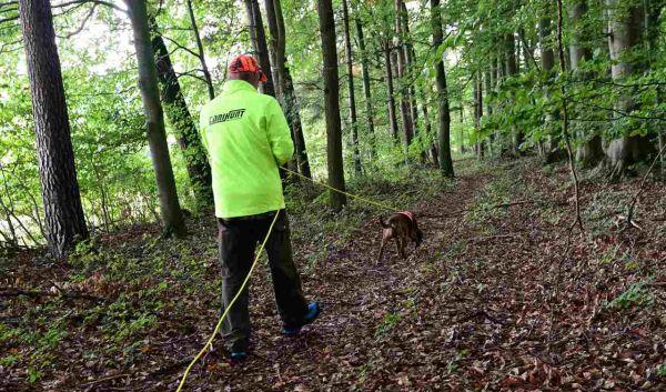 Fährtenarbeit mit Hund